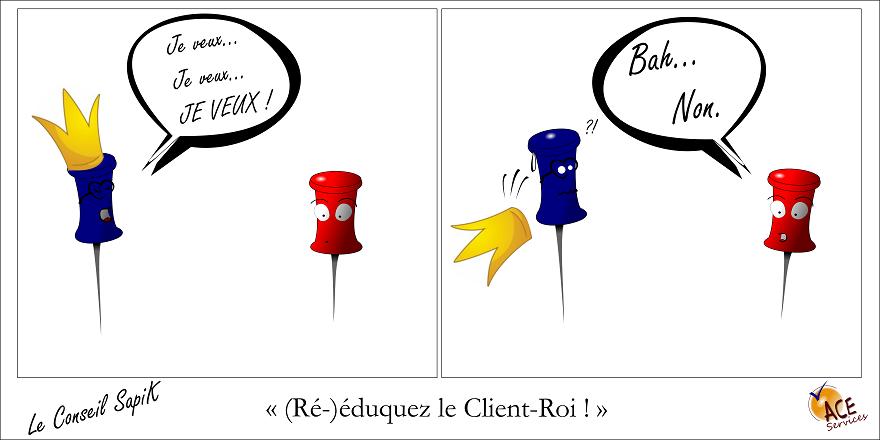 conseil SapiK ré-éduquez le client BD